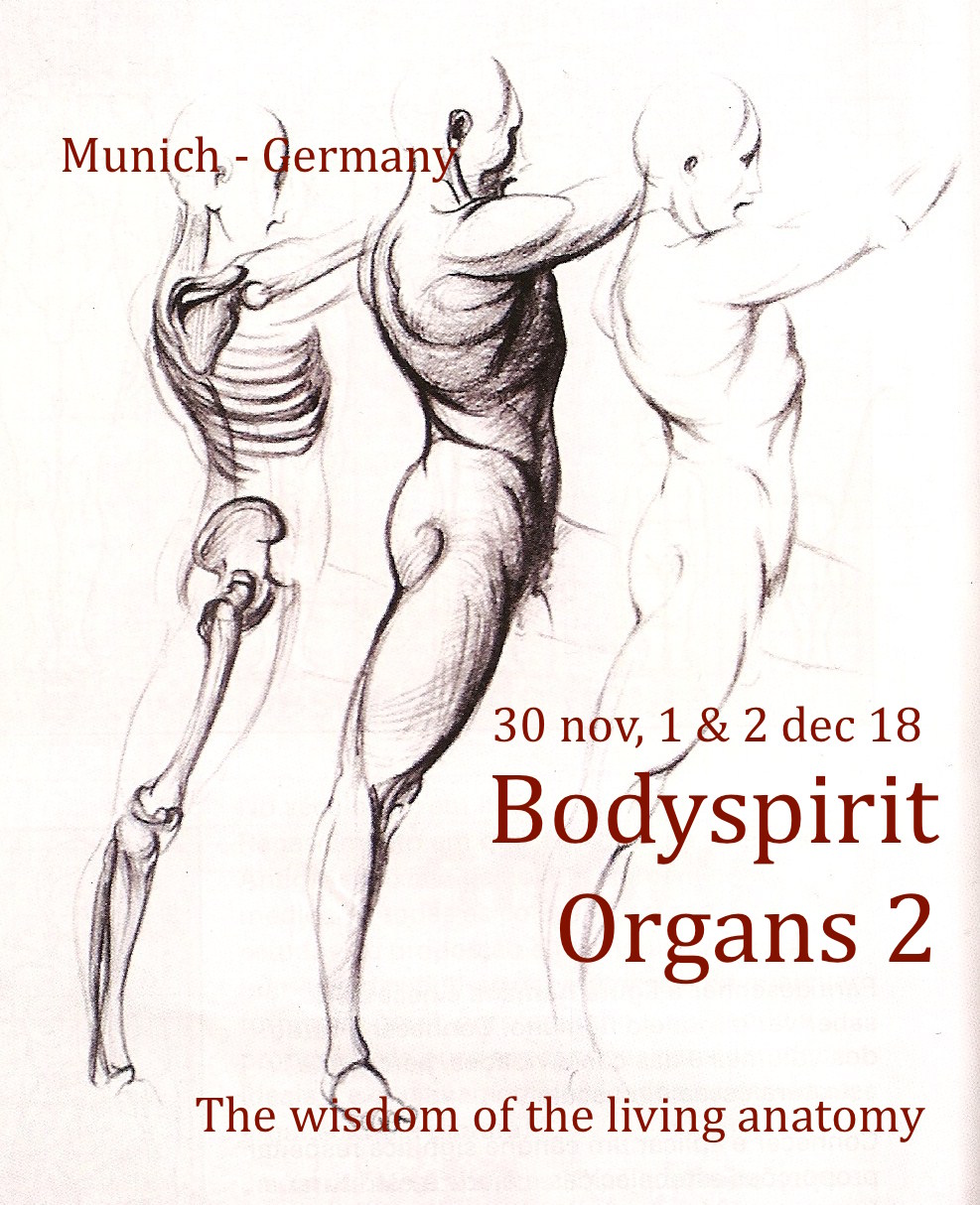Souldance Bodyspirit The Organs Part 2 Incarnation And