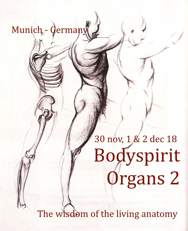 bodyspirit organs 2