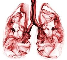 longen origineel