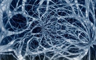 nerves-4524910_640