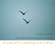 zomer-4-daagse-synchronicity_optimized